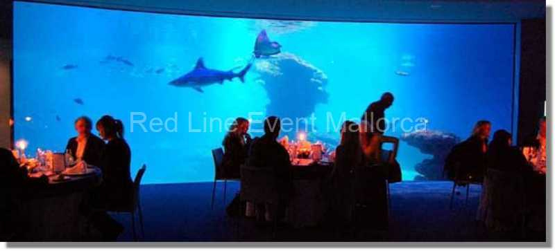 red-line-event-catering-14