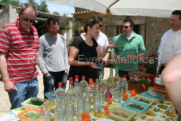 red-line-mallorca-incentive-Hierbas-workshop